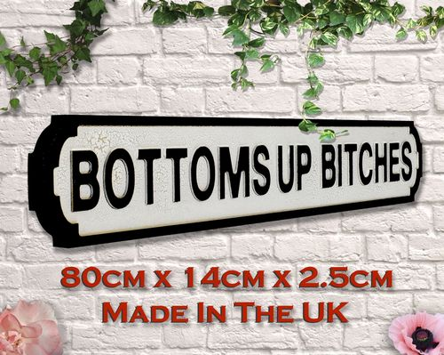 Bottoms Up Bitches Vintage Road Sign / Street Sign